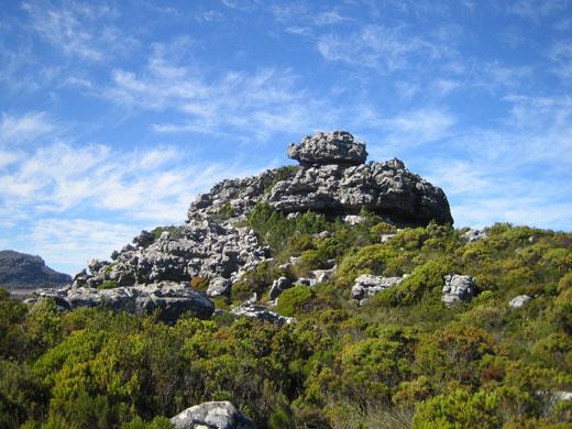 Woody Ravine Hiking Trail